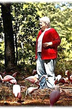 "Margaret Maron ""gifted"" with Flamingos"