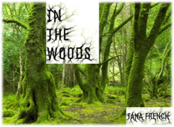 In The Woods by Tana French graphic
